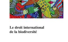 Le droit international de la biodiversité